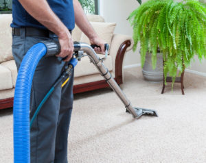 Carpet Cleaning in Salisbury